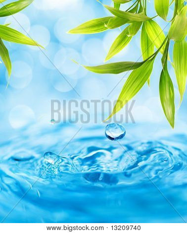 Water drops falling from a bamboo leaf