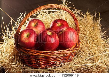 basket with apples lying in the hay