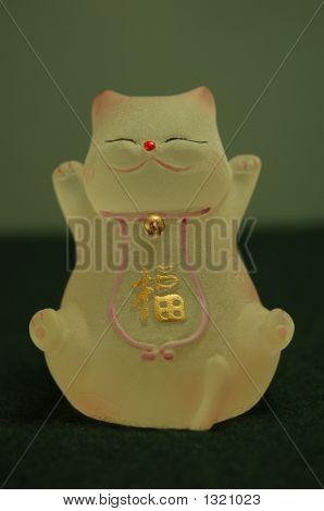 Chinese Kitten