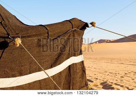 In Oman The  Of Berber