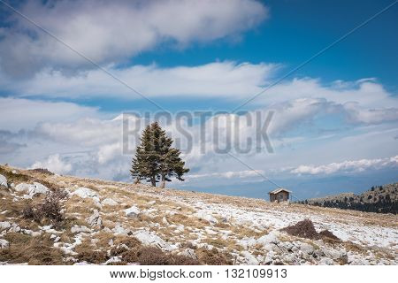 Landscape with a small cabin and one tree in the mountains in winter.Greece