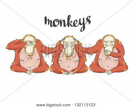 illustration of cartoon Three monkeys - see hear speak no evil