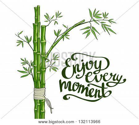 Bamboo green vector illustration. Enjoy every moment card.