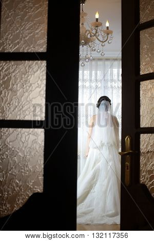 Back Of Beautiful Bride