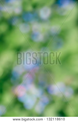 Beautiful sparkling abstract pink, green and blue nature bokeh background defocused