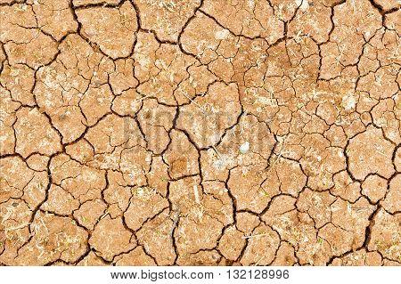 Concept of drought . Cracked soil closeup