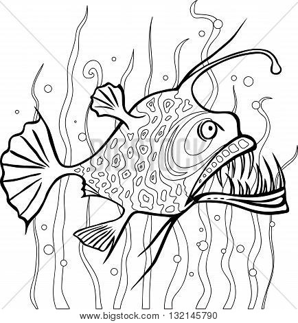 Anglerfish coloring page. Black and white line vector drawing