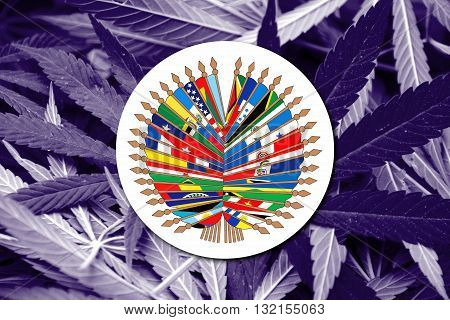Flag Of  Organization Of American States, On Cannabis Background