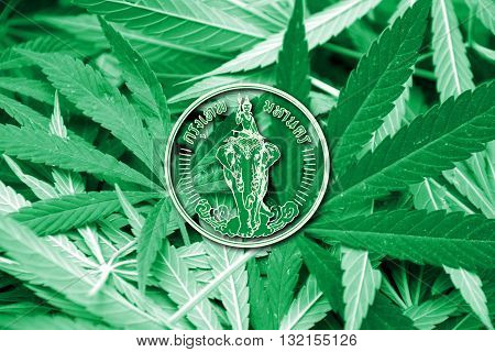 Flag of Bangkok on cannabis background. Drug policy. Legalization of marijuana