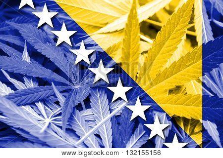 Flag Of Bosnia And Herzegovina, On Cannabis Background