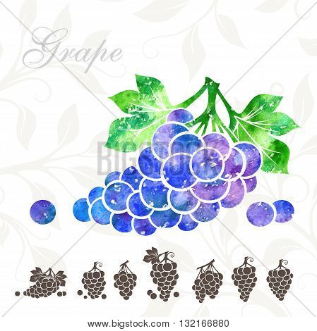 Grape icons set. Grape illustration with watercolor texture