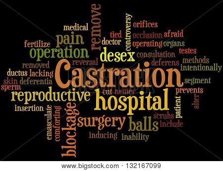 Castration, Word Cloud Concept 8