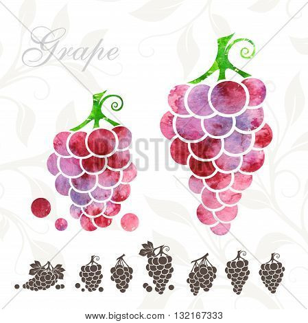 Red Grape icons set. Grape illustration with watercolor texture