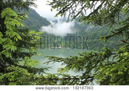 LANDSCAPE ABKHAZIA lake Ritsa  spring 29 may 2016