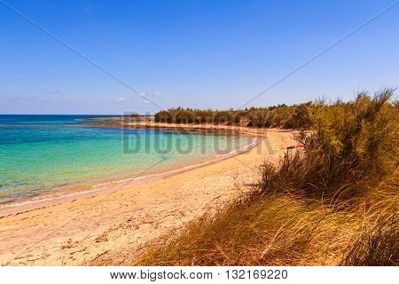 SUMMER.Salento coast: a nature reserve of Torre Guaceto.BRINDISI (Apulia)-ITALY-