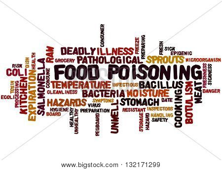 Food Poisoning, Word Cloud Concept 2