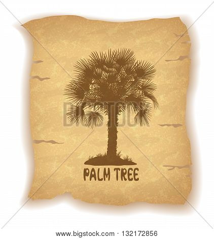 Tropical Palm Trees and Grass Silhouettes and Inscription on Vintage Background of an Old Sheet of Paper. Eps10, Contains Transparencies. Vector