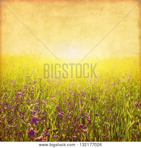 Summer field at sunset in grunge and retro style.