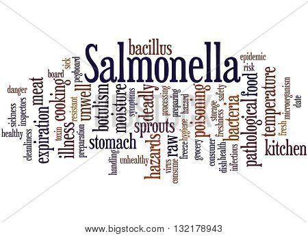 Salmonella, Word Cloud Concept