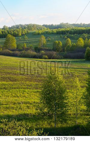 Beautiful hills landscape vertical. Hill landscape. Rolling hills. Hills and sky. Beautiful landscape.