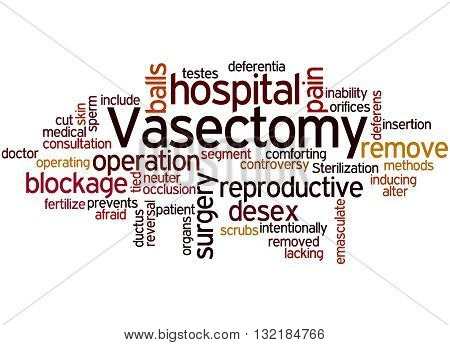 Vasectomy, Word Cloud Concept 8