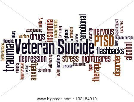 Veteran Suicide, Word Cloud Concept 2