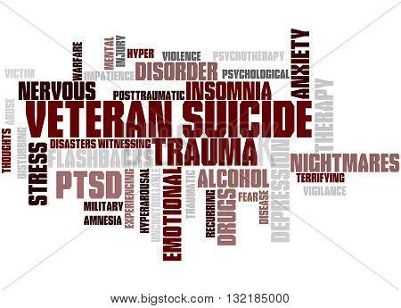 Veteran Suicide, Word Cloud Concept 4