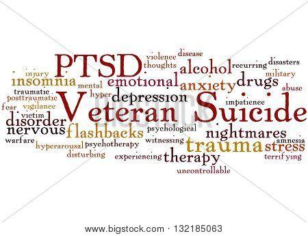 Veteran Suicide, Word Cloud Concept 5
