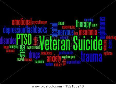 Veteran Suicide, Word Cloud Concept 8