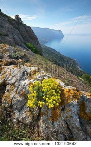 Mountain sea landscape. Composition of nature.