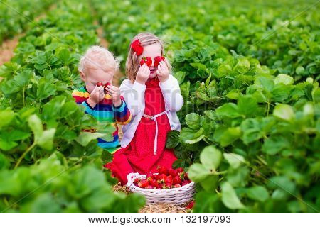 Children pick strawberries. Kids picking fruit on organic strawberry farm. Children gardening and harvesting. Toddler kid and baby eat ripe healthy berry. Outdoor family summer fun in the country.