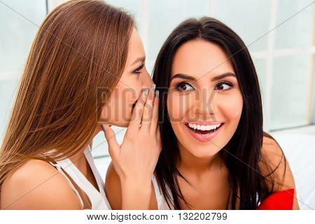Portrait Of Two Happy Gossips Having Private Talk