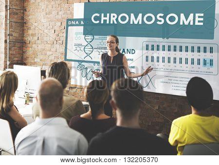 People Diversity Presentation Discussion Concept