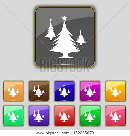 Coniferous Forest, Tree, Fir-tree Icon Sign. Set With Eleven Colored Buttons For Your Site. Vector