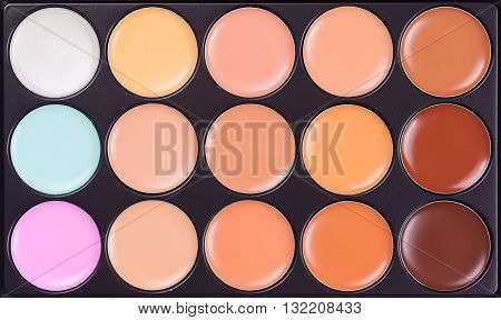 Professional Makeup Concealer Cosmetics