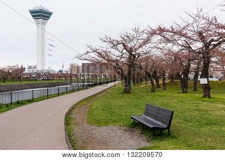 Goryokaku Park And Tower With Sakura, Hakodate