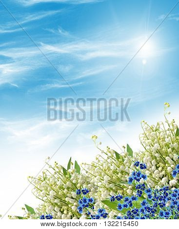 Floral background. Flowers forget me. lilies of the valley
