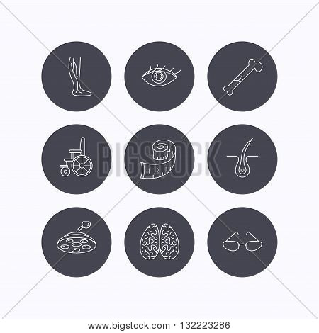 Vein varicose, neurology and trichology icons. Surgical lamp, glasses and eye linear signs. Bone fracture, wheelchair and weight loss icons. Flat icons in circle buttons on white background. Vector