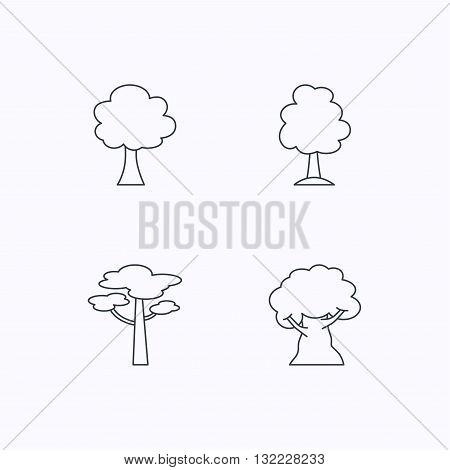 Pine tree, oak-tree icons. Forest trees linear signs. Flat linear icons on white background. Vector