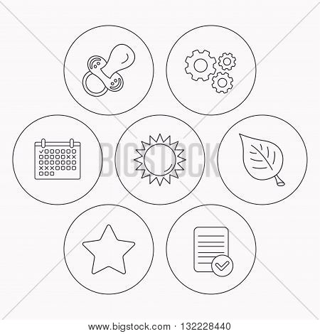 Leaf, star and sun icons. Pacifier linear sign. Check file, calendar and cogwheel icons. Vector