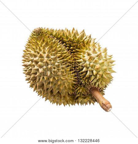 tropical fruit Durian isolated on white background