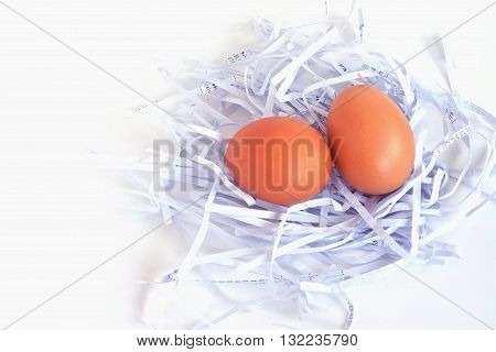 eggs in a white nest, background, food