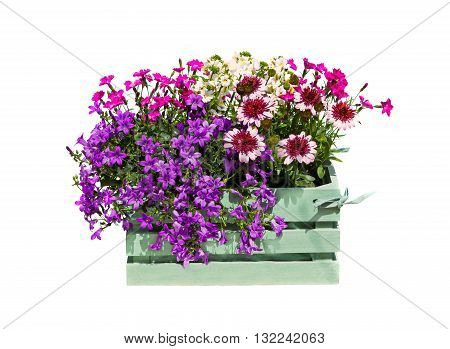 A Wooden Box With Garden Flowers.