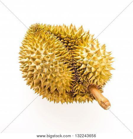 durian isolated on white backgroundKing of fruits in Thailand
