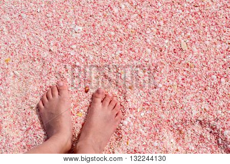 Little girl feet on pink sand beach at Barbuda island in Caribbean made of tiny pink shells, close up photo