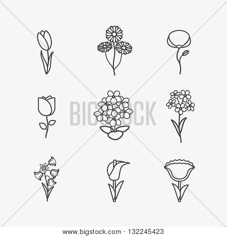 Flowers icons. Vector flower thin black line signs on white background
