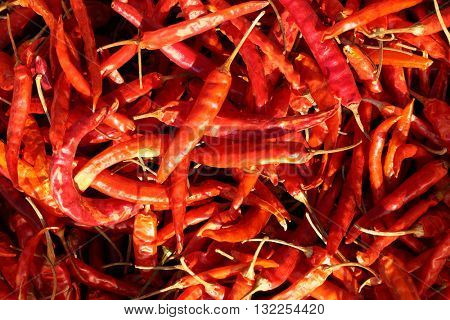 dried hot red pepper background