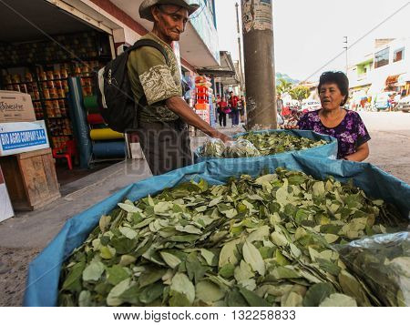 TINGO MARIA PERU - JUNE 22: The sale of coca leaves in streets of Tingo Maria in Peru 2011