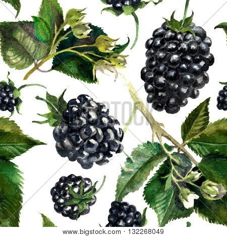 Pattern blackberries on a drips of watercolor background watercolor painting