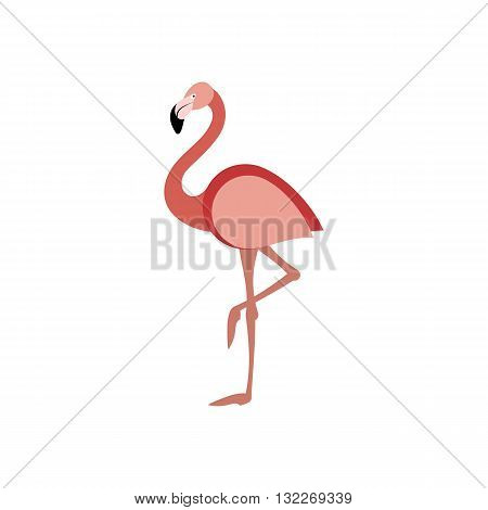 Beautiful pink flamingo standing on one leg vector illustration isolated on white background.